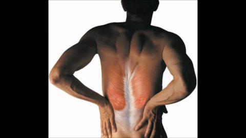 Компрессионный перелом грудного отдела позвоночника сопровождается симптомом вожжей