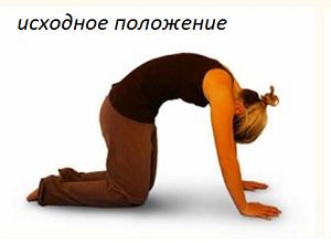 Подъёмы и отведения рук и ног
