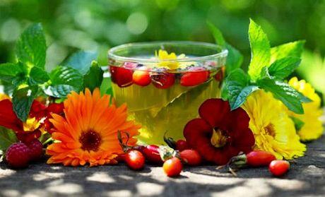 Лечебные чаи из цветков, травок и ягод