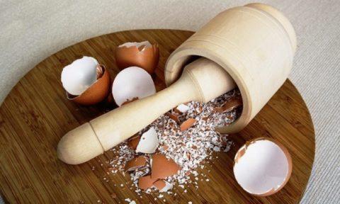 Яичная скорлупа помогает восстановлению костных тканей.