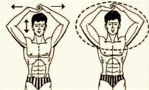 Направления движений в упражнении для разработки локтя после отмены иммобилизации