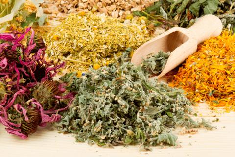 Устранить симптомы и последствия укусов помогут разнообразные травяные сборы.