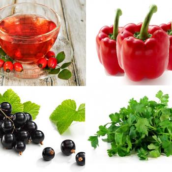 Истинные кладовые витамина С