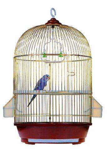 Домик для птицы должен быть просторным и уютным