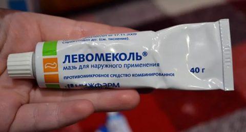 Можно нанести на укушенную поверхность антибактериальную мазь.