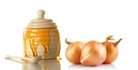 Луковое пюре с медом обеззаразит раны и ускорит процесс их заживления.