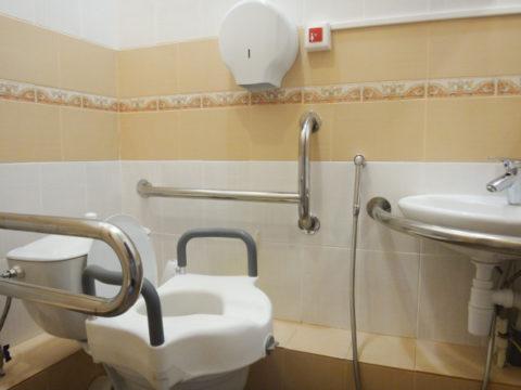 Поручни в ванной и приспособление для унитаза