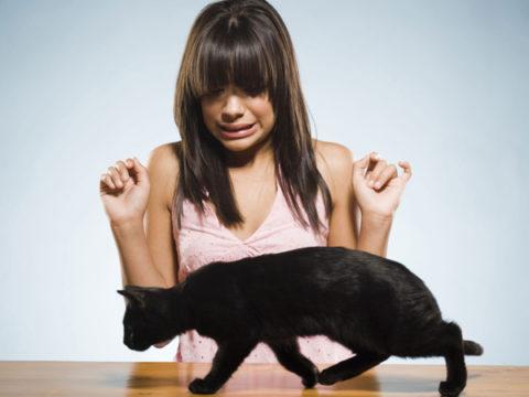 Сильный страх перед животными – обычно последствие агрессии четвероного, пережитого в детстве