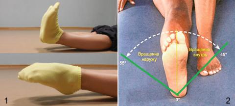 Упражнения: «икроножный насос» (1) и «голеностопный маятник» (2)