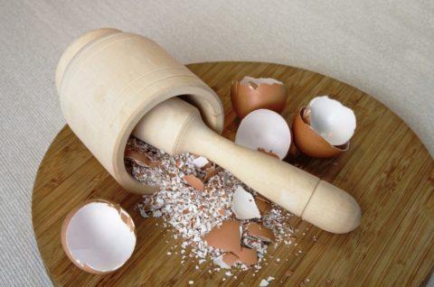 Насытить организм кальцием поможет обычная перемолотая скорлупа куриных яиц.