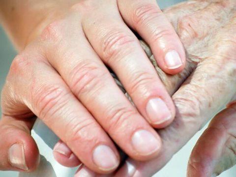 Продолжительность восстановления целостности и функциональности кости