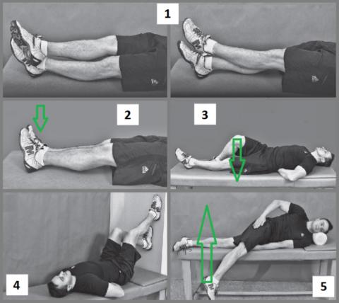 Рекомендуемые упражнения
