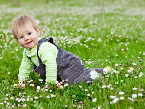 Родители должны контролировать поведение детей на полянках.