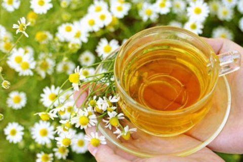 Успокоиться, устранить боль и воспаление, улучшить сон поможет чай с мятой и ромашкой.