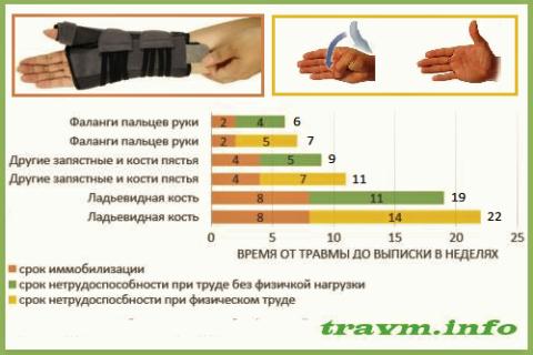 Средние сроки иммобилизации и нетрудоспособности при неосложнённых переломах кисти