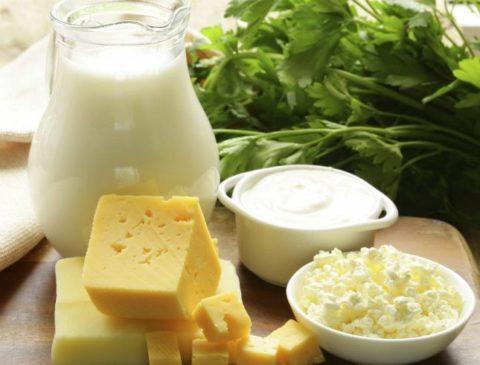 Продукты питания для укрепления костной ткани позвонков