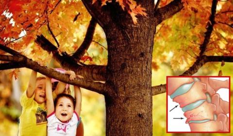 У некоторых детей спрыгивание даже с небольшой высоты может вызвать компрессионный перелом