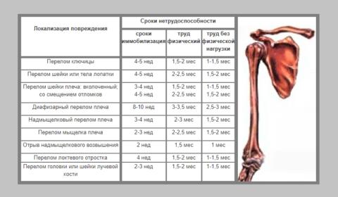 Перелом от плеча до локтя: среднестатистические сроки сращения у здоровых лиц зрелого возраста